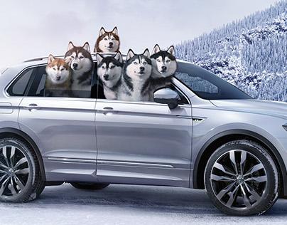 Volkswagen Huskies