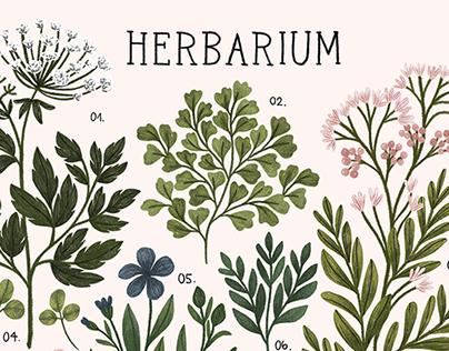 Herbarium ~ vintage inspired print and pattern