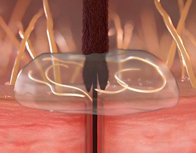 Mosquito Hemolymph &HeartwormLarvae Simulations