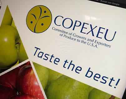 Copexeu | Branding