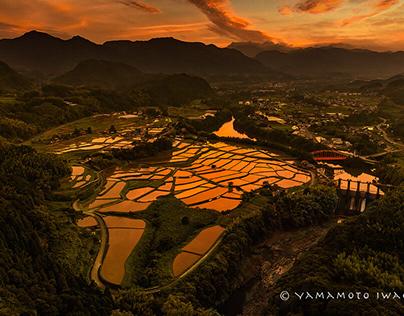 Japanese Paddy Fields