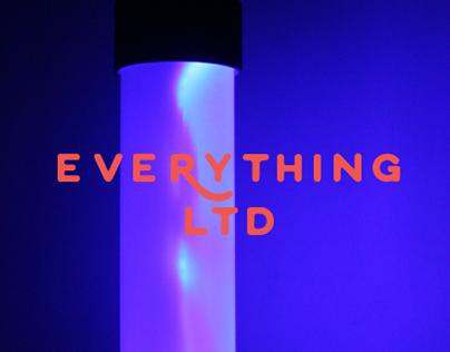 Everything Ltd. (2015)