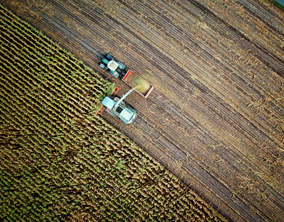 Innovation and Global Food Systems
