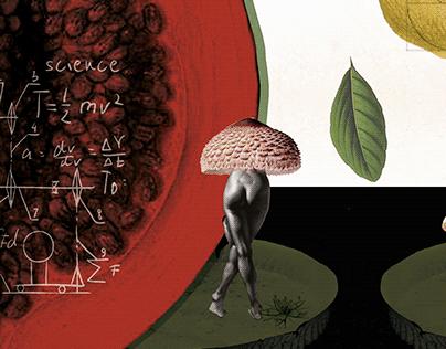 el botánico