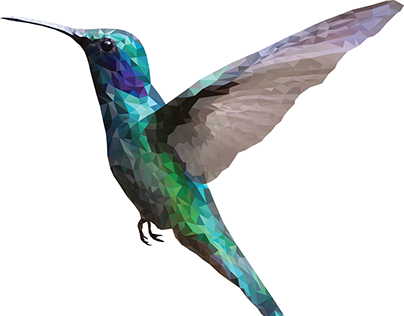 Humming bird - low poly technique