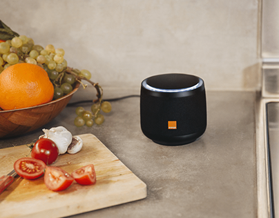 Djingo, Orange voice assistant