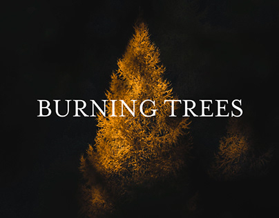 BURNING TREES / DOLOMITES, ITALY