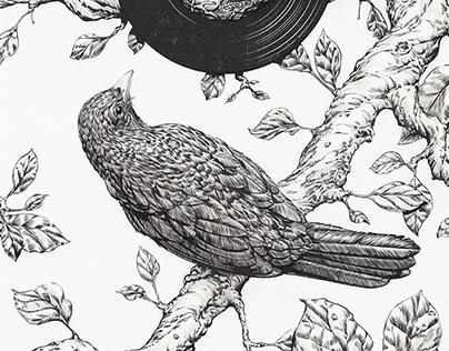 Blackbird brush and ink