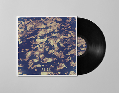 Flex | Pre-made Album Cover Art Design For Sale.