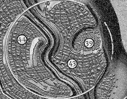 The City of Nesh