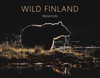 Wild Predators of Finland