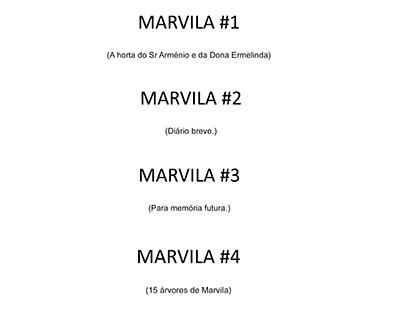 MARVILA - 2017