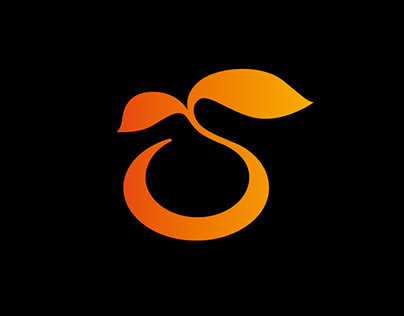 Flyers Mandarine