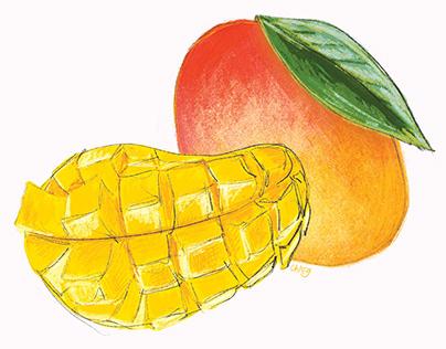 Taiwan Fruits - Digital Illustrations
