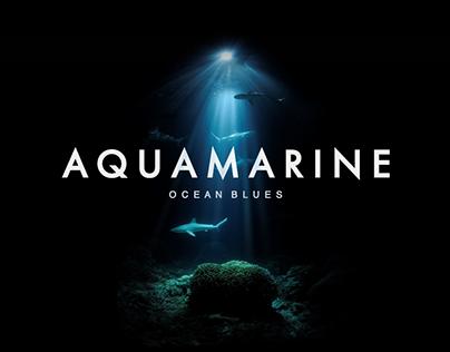 Aquira — An Ecotourism Project