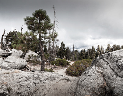 BUENA VISTA PEAK, Sequoia National Forrest