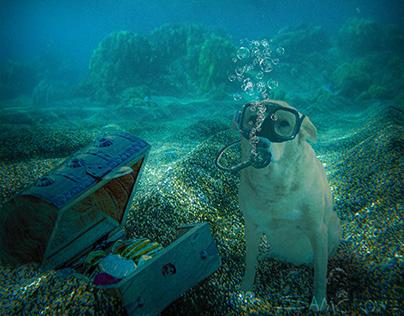 underwater molly
