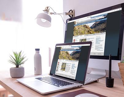Website Wireframes & Design Mockups (2012)