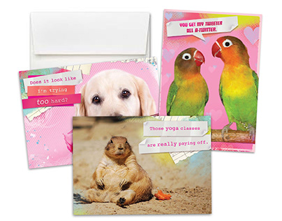Wow Wow Pets Card Collection for Target
