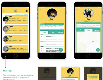 UX Design- Animal Cloud APP