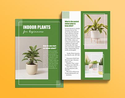 Indoor Plants Minimal template