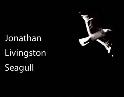 book analysis jonathan livingston seagull Jonathan livingston seagull by richard bach - book review long back, almost  20 years ago, someone i do not remember now, told me that.