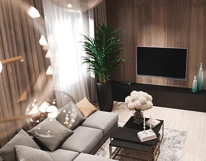 Livingroom and lobby.