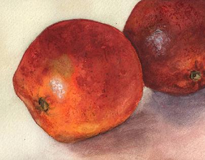 Close-Up: Sicilian Oranges