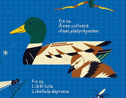 Congost biodiversity