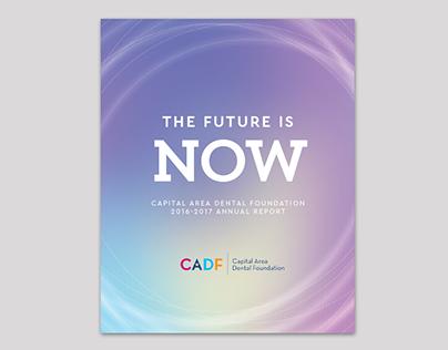 Capital Area Dental Foundation Annual Report 2016-17