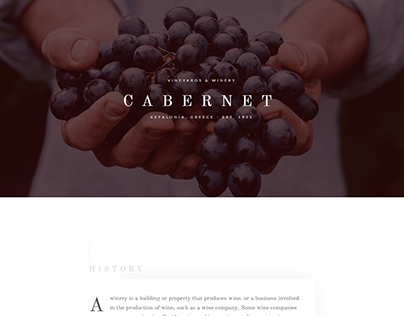 Landing page for wineries - Cabernet