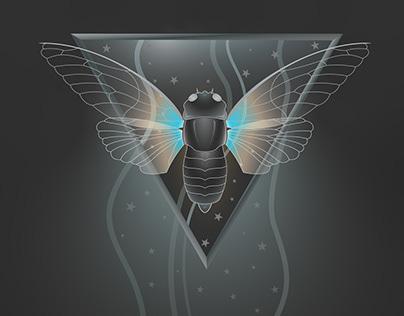 Cicadas - Cicadoidea