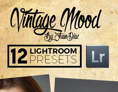 Professional Vintage Lightroom Presets