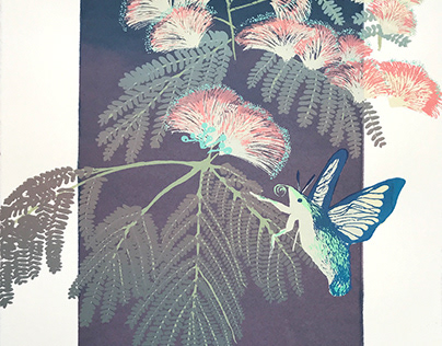 Mimosa Blossoms