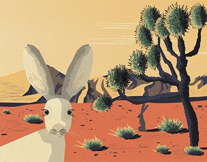 US National Parks Envelope Bundle