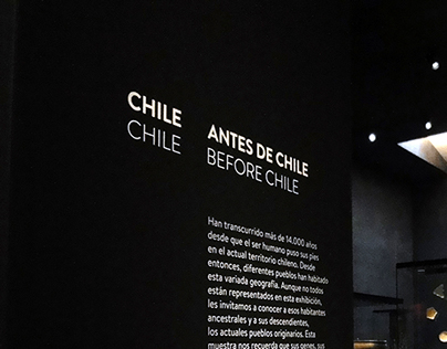 Museo Precolombino Gallery