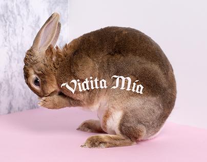 Vidita Mía — Branding