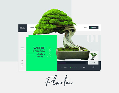 Plantm Concept_