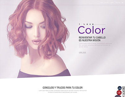 Proyecto I love color Colour Specialist