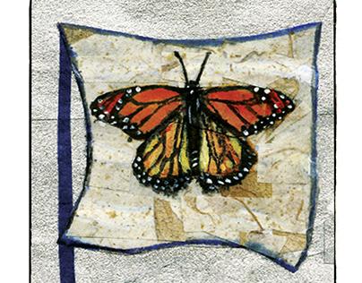 Pollinator Tarot Cards
