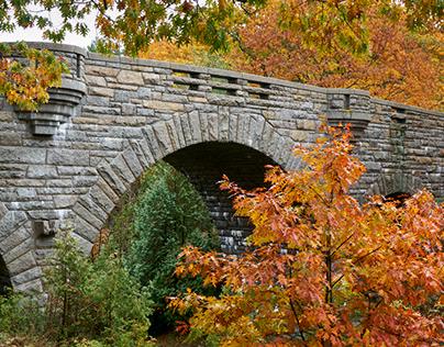 Autumn-Maine