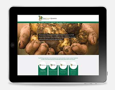 First Potato Dynamics website rebrand