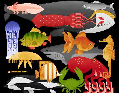 ANIMAL ANATOMY by Lida Larina | illustrated cards