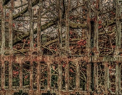 "London, Isleworth: ""Rusty railings"""