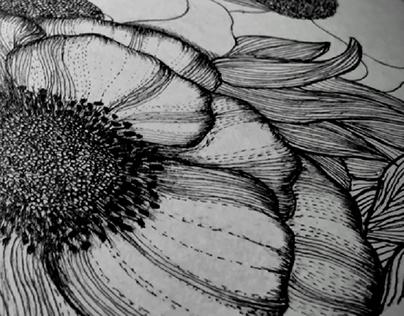 Black & White Wild Flowers