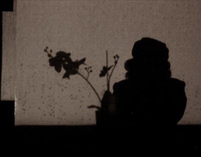 Motion Photograph: Night