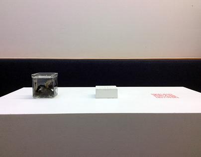 White Noise - Sculpture, Field Recording