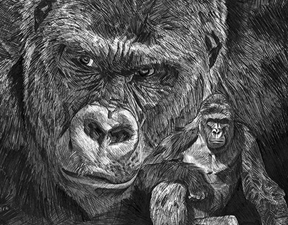 Pen and Ink Portrait of Harambe - by Julio Lucas