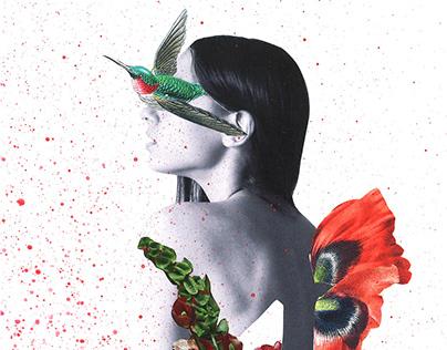 Crisálida :: Colección de collage