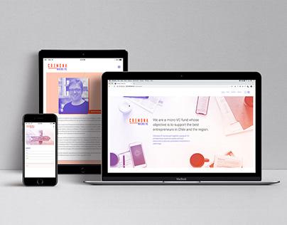 Cremona VC website design